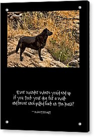 What If Acrylic Print by Bonnie Bruno