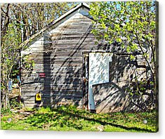 Acrylic Print featuring the photograph What's He Hiding In There? by MJ Olsen