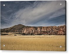 Acrylic Print featuring the photograph Wheatfield Zion National Park by Hugh Smith