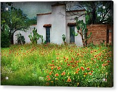 Acrylic Print featuring the photograph When A House Is A Home by Barbara Manis