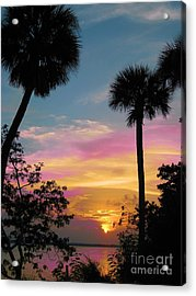 When Day Is Done Acrylic Print by Judy Via-Wolff