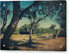 When I Was Your Girl Acrylic Print by Laurie Search
