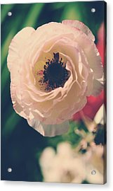 When Love Was Fresh And New Acrylic Print
