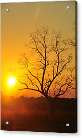 When The Day Is Over Acrylic Print by Jan Amiss Photography