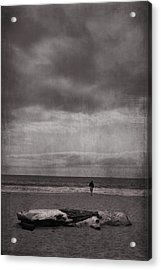 When You're All Alone In This Life Acrylic Print by Laurie Search