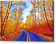 Where The Road Snakes Acrylic Print by Douglas Barnard