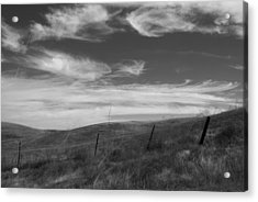 Acrylic Print featuring the photograph Whipping Up The Hillside by Kathleen Grace