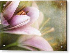 Whisper Of Spring Acrylic Print