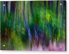 Whispers On The Wind Acrylic Print
