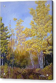 Acrylic Print featuring the painting White Bark Yellow Leaves by Robert Decker
