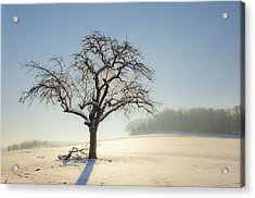 White Calm Acrylic Print by Arnaud Boukalala