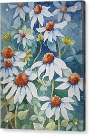 White Coneflowers II Acrylic Print