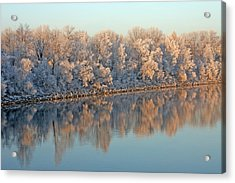 White Frost In Trees Acrylic Print by Ralf Kaiser