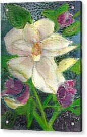 White Happy Flower Acrylic Print by Anne-Elizabeth Whiteway