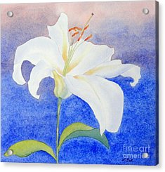 Acrylic Print featuring the painting White Lily by Laurel Best