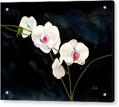 Acrylic Print featuring the painting White Orchids by Alethea McKee