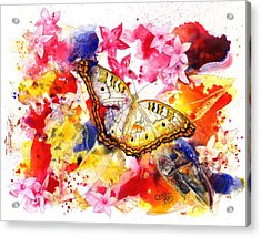 White Peacock Butterfly With Pentas Acrylic Print by Art by Carol May