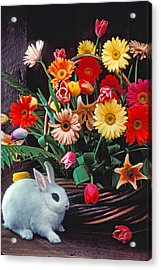 White Rabbit By Basket Of Flowers Acrylic Print by Garry Gay