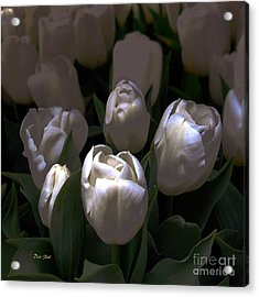 White Tulips Acrylic Print by Dale   Ford