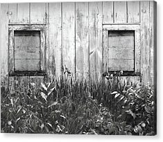 White Windows Acrylic Print by Anna Villarreal Garbis