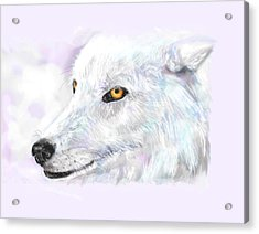 White Wolf Acrylic Print by Lakota Phillips