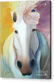 White Work Horse Acrylic Print