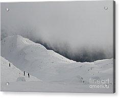 Whiteout Whistler Acrylic Print by Don F  Bradford