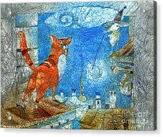 Who Lights The Stars Acrylic Print by Svetlana and Sabir Gadghievs