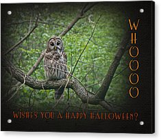 Whoooo Wishes  You A Happy Halloween - Greeting Card - Owl Acrylic Print by Mother Nature