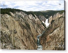 Acrylic Print featuring the photograph Wide View Of The Lower Falls In Yellowstone by Living Color Photography Lorraine Lynch