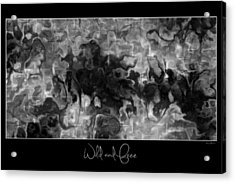 Acrylic Print featuring the digital art Wild And Free by Kim Redd