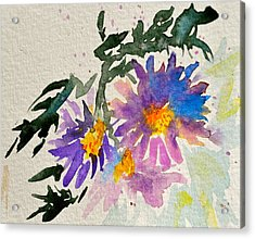 Wild Asters Acrylic Print by Beverley Harper Tinsley