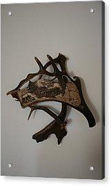 Wild Boars Running Acrylic Print by Banucu Ioan