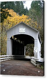 Wild Cat Bridge  Acrylic Print by Mary Gaines