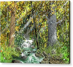 Acrylic Print featuring the drawing Wild Creek - October by Jim Hubbard