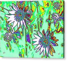 Wild Daisies Acrylic Print by Denise Oldridge