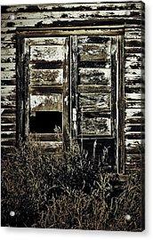 Wild Doors Acrylic Print by Jerry Cordeiro