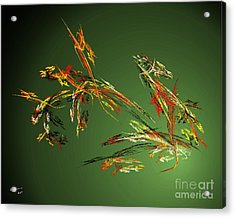 Wild Flowers Acrylic Print by Arne Hansen
