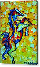 Wild Horse Acrylic Print by Ana Maria Edulescu