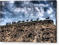Wild Horses Monument Acrylic Print by Spencer McDonald
