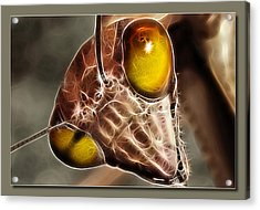 Acrylic Print featuring the digital art Wild Mantis by Kevin Chippindall
