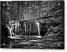 Wildcat Creek  Acrylic Print