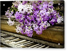 Wildflower Music Acrylic Print by Kathy Jennings