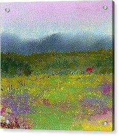 Wildflowers Acrylic Print by David Patterson