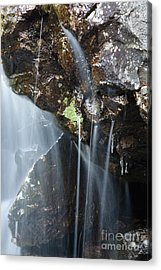 Willey Brook - White Mountains New Hampshire  Acrylic Print by Erin Paul Donovan