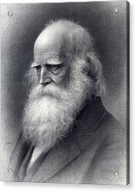 William Cullen Bryant 1794-1878 Was An Acrylic Print by Everett