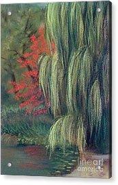 Acrylic Print featuring the drawing Willow Tree - Hidden Lake Gardens -tipton Michigan by Yoshiko Mishina