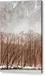 Willow Trees In Winter At Kamikochi Acrylic Print by Skye Hohmann