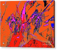 Wilted Spider Ws 24a Acrylic Print by Nina Kaye