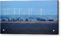 Wind Farm On The Delta Acrylic Print by Bonnie Muir